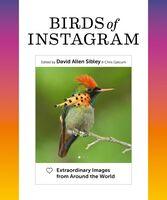 David Sibley  Allen - Birds Of Instagram (Hcvr)