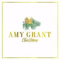 Amy Grant - Christmas [Limited Edition LP Box Set]