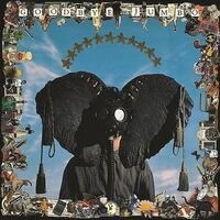 World Party - Goodbye Jumbo [Import LP]