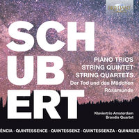 Schubert / Brandis Quartet / Klaviertrio Amsterdam - Quintessence Schubert (Box)