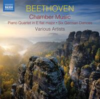 Beethoven - Chamber Music (2pk)