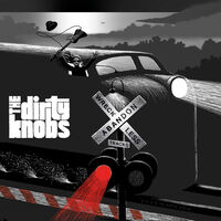 The Dirty Knobs - Wreckless Abandon [2LP]