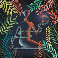Loma - Don't Shy Away [LP]