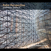 Grimaldi / Collard-Neven / Sicart - Pulse Perspective