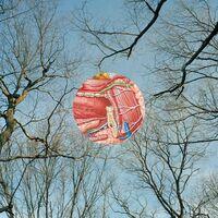 They Might Be Giants - Glean [Includes Bonus Album 'Flood Live In Australia']