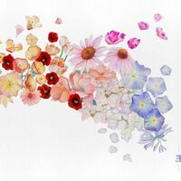 Gretchen Parlato - Flor