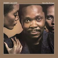 Terry Callier - Turn You To Love [180 Gram]