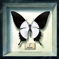Tricot - 3 [LP]