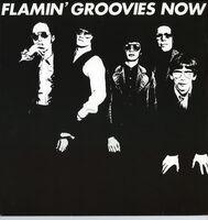 Flamin Groovies - Now