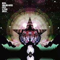 Noel Gallagher's High Flying Birds - Black Star Dancing [Vinyl Single]