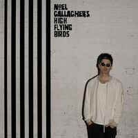 Noel Gallagher's High Flying Birds - Chasing Yesterday [Limited Edition Deluxe]