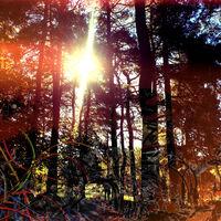 Viviankrist - Cross Modulation Bootleg Remixes