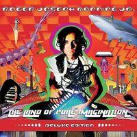 Roger Joseph Manning Jr. - Land Of Pure Imagination