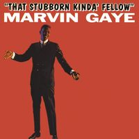 Marvin Gaye - That Stubborn Kinda Fellow (Hol)
