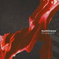 Phillips / Numinous - Grey Land