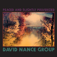 David Nance - Peaced & Slightly Pulverized