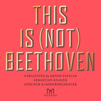 Arash Safaian / Knauer,Sebastian / Zurcher Kammer - This Is (Not) Beethoven (Uk)