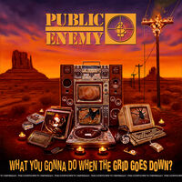 Public Enemy - What You Gonna Do When The Grid Goes Down? [LP]
