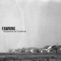 Fawning - Illusions Of Control [Colored Vinyl]