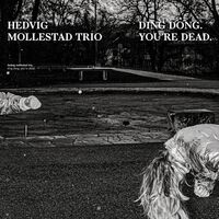 Hedvig Mollestad Trio - Ding Dong You're Dead [Clear Vinyl]