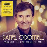Daniel Odonnell - Walkin In The Moonllight