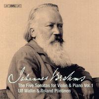Ulf Wallin - 5 Sonatas Violin & Piano 1 (Hybr)
