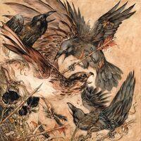 Valkyrie - Shadows [LP]