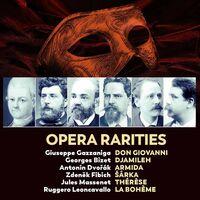 Opera Rarities / Various (Box) - Opera Rarities / Various (Box)