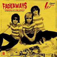 The Fadeaways - Transworld 60's Punk Nuggets