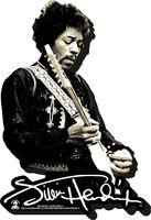Jimi Hendrix - Jimi Hendrix Bw Funky Chunky Magnet