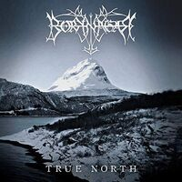 Borknagar - True North [2LP]