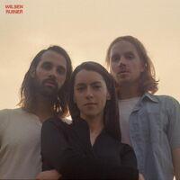 Wilsen - Ruiner [LP]