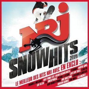 NRJ Snow Hits 2014 /  Various [Import]