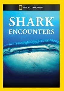 Shark Encounters