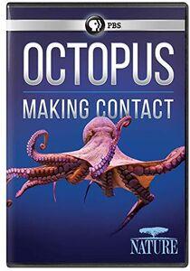 NATURE: Octopus: Making Contact