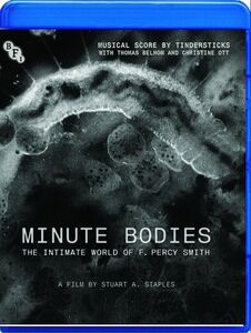 Minute Bodies