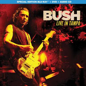 Bush: Live in Tampa