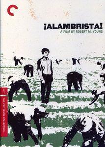 Alambrista! (Criterion Collection)