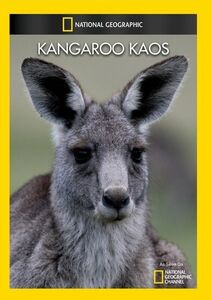 Kangaroo Kaos