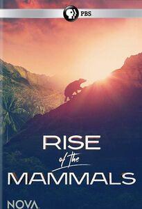 Nova: Rise of the Mammals