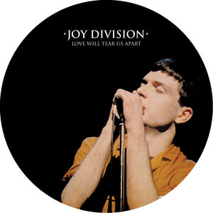 Love Will Tear Us Apart - A Gorgeous Picture Disc Vinyl