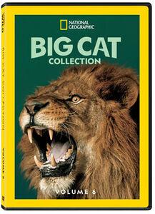 Big Cat Collection, Vol. 6