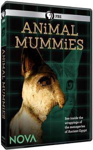 Nova: Animal Mummies