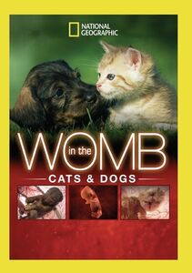 In The Womb: Cats And Dogs
