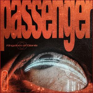 Passenger (Black Vinyl)