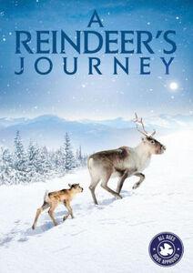 Reindeers Journey