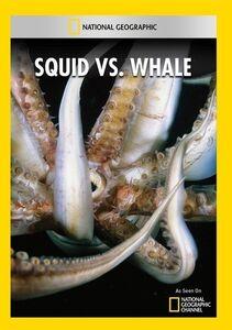 Squid Vs Whale