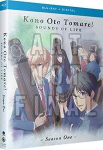Kono Oto Tomare!: Sounds of Life - Season One