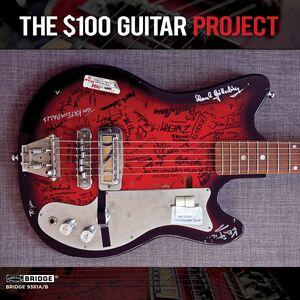 $100 Guitar Project /  Various