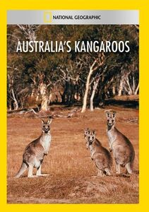 Australias Kangaroos